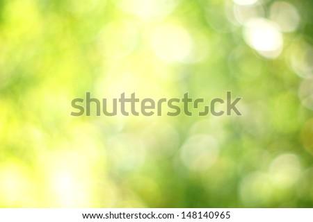 abstract green yellow summer bokeh      - stock photo