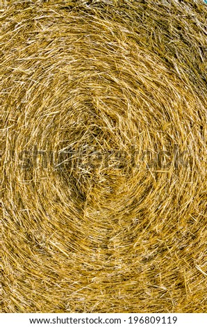Abstract hay bale background - stock photo