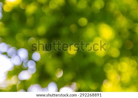 Abstract landscape of defocused summer forest, photo useful as background. - stock photo