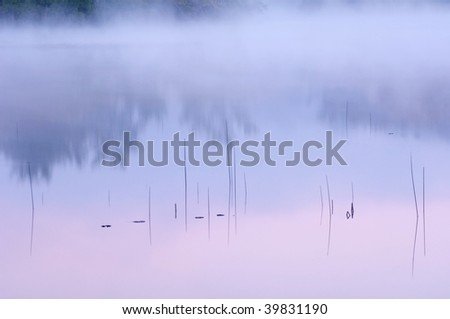 Abstract landscape of reeds and reflections in calm water at dawn, Hall Lake, Yankee Springs State Park, Michigan, USA - stock photo