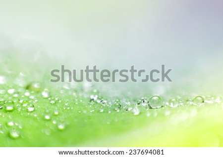 abstract light bokeh colorful background  - stock photo