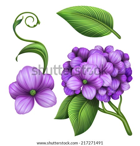 abstract lilac hydrangea branch with green leaf, illustration isolated on white background - stock photo