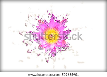 Abstract Liquify Pink Lotus Symbol Buddhism Stock Photo Royalty