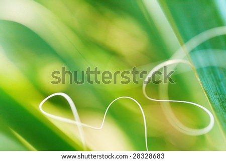 Abstract macro green grass background - stock photo