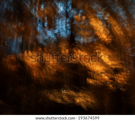 Abstract motion blur of trees in an autumn forest. Intentional motion blur - stock photo