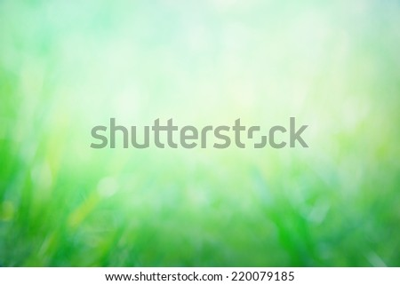 Abstract natural background - stock photo