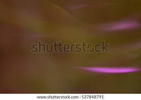Abstract natural background, Christmas tree decoration, lights, New Year