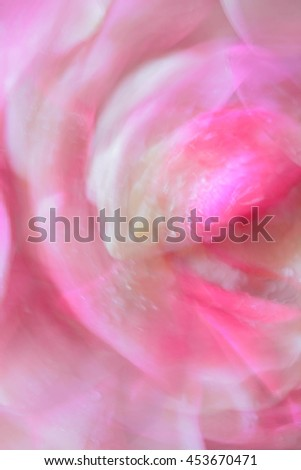 Abstract natural background, roses