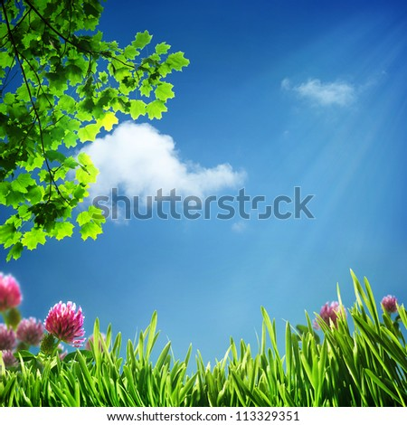 Abstract natural backgrounds for your design - stock photo