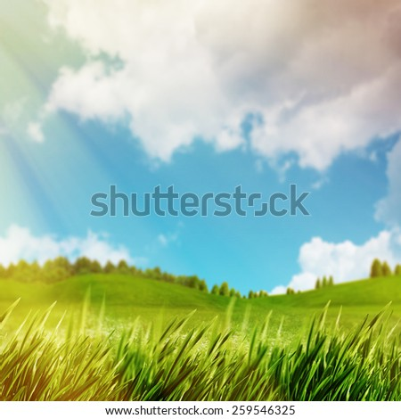 Abstract natural backgrounds with green meadow under bright summer sun - stock photo