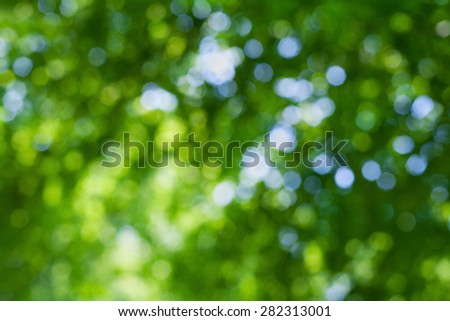 abstract natural blur background, defocused leaves, bokeh - stock photo
