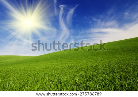 Abstract natural idyllic background with green grass, sun shining  and cloudy blue sky - stock photo