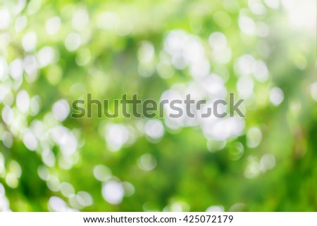 Abstract nature. Abstract nature background. Green bokeh. Green bokeh nature. Green bokeh out of focus background from nature forest. - stock photo
