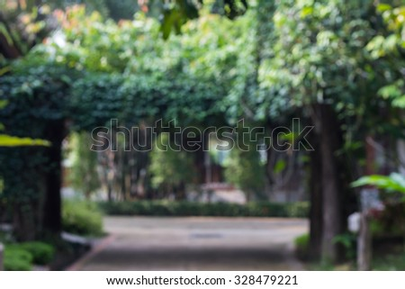 Abstract  nature background with blurry bokeh defocused lights(Gate covered by green climbing plant against) - stock photo