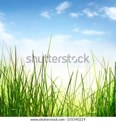 abstract nature background with grass - stock photo
