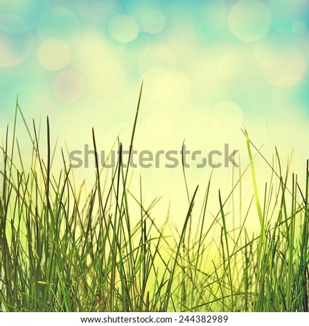 abstract nature background with grass. Retro stale. - stock photo