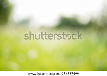 Abstract nature green blurred background with bokeh. - stock photo