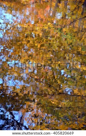 Abstract of fall leaves reflected in water - stock photo