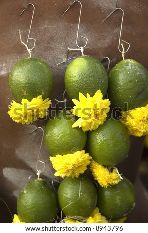 abstract of lemon pierce behind a back of a hindu devotee for thaipusam event - stock photo