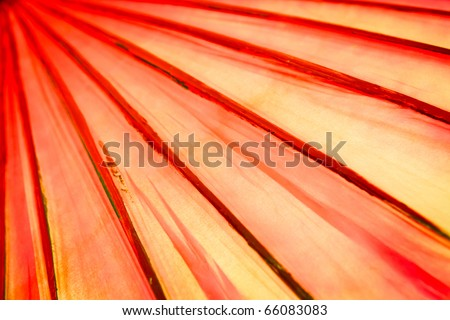 abstract of red lines - stock photo