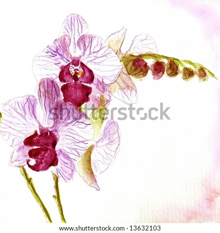 Abstract painted floral background in different shades of rose and violet with romantically orchid flower on white. Art is created and painted by photographer - stock photo