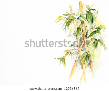 Abstract painted green japanese bamboo leaves. Watercolor illustration on white background. Art is created and painted by the photographer