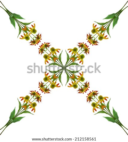 abstract pattern floral background of Yellow coneflowers (Echinacea), isolated on white  Background - stock photo