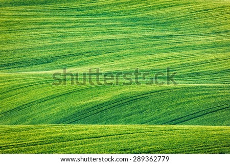 Abstract pattern texture of rolling fields in summer. Moravia, Czech Republic - stock photo