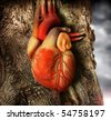 Abstract photo of a human heart growing out of a tree trunk - stock photo
