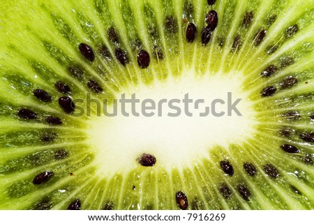 Abstract photo of a kiwi by macro lens
