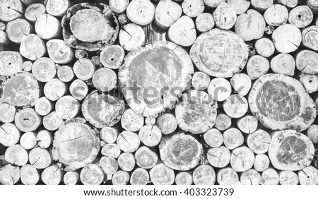 Abstract photo of a pile of natural wooden logs background, top view ,Black and white. - stock photo
