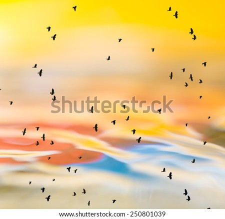 abstract photo of birds against water surface - stock photo