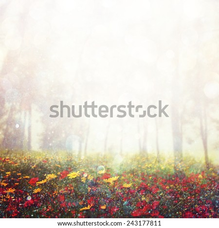 abstract photo of wild flower field and bright bokeh lights. cross proccess effect  - stock photo