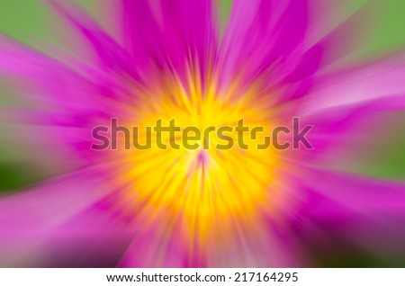 Abstract pink lotus blurred background