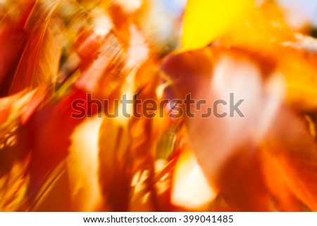 Abstract red and yellow leaves on the wind closeup; blurred 100%
