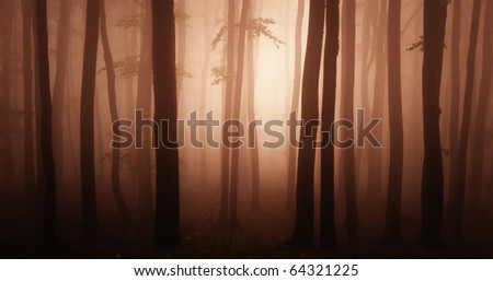 abstract red forest - stock photo