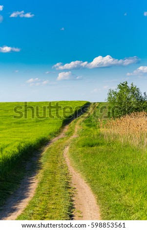Abstract rural scenery in spring, with infinite horizon, dirt country road, bright colors, along natural lake with reed plants