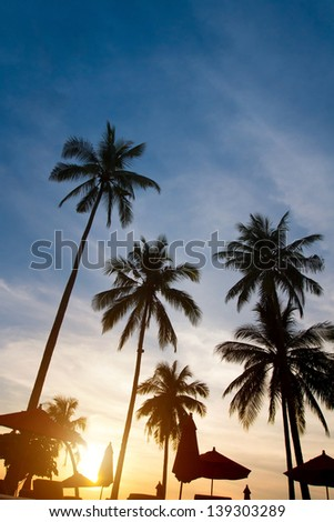 abstract silhouettes of palm trees on sunset - stock photo