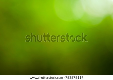 Abstract smoky bright green with a yellow background with white bokeh, photo