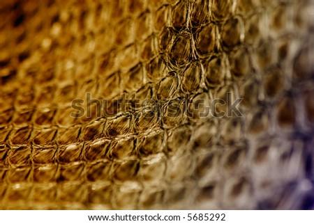 abstract snakeskin texture - stock photo