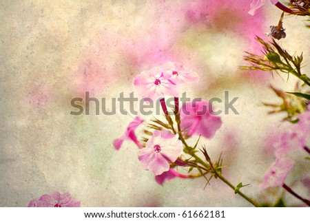 Abstract soft floral summer nature background on antique texture with copy space. - stock photo
