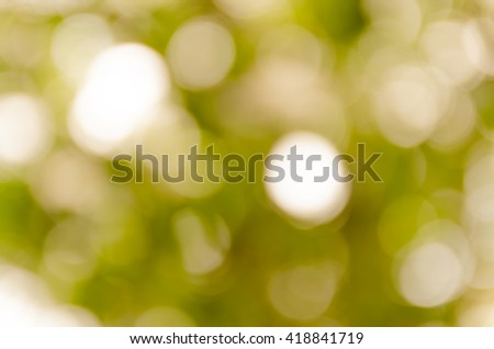 Abstract spring background. Green natural background of out of focus forest or bokeh. - stock photo