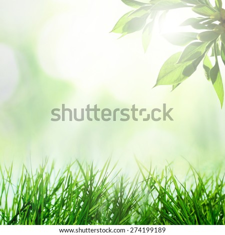 Abstract spring growing nature background with grass and tree - stock photo