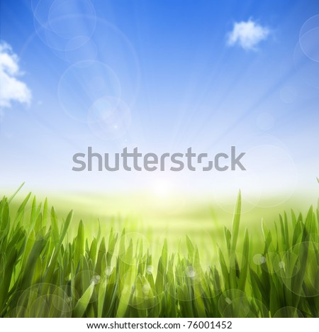 abstract Spring nature background of spring grass and sky - stock photo