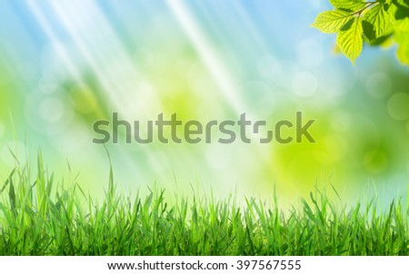 Abstract sunny spring background with grass and sunlight - stock photo