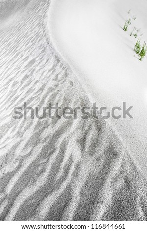 Abstract texture of sand dune in desert with growing grass - stock photo