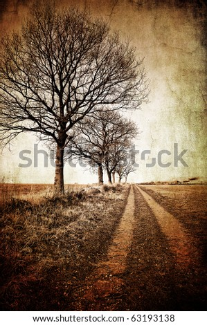 abstract textured image of winter trees and a farm track for a vintage look - stock photo