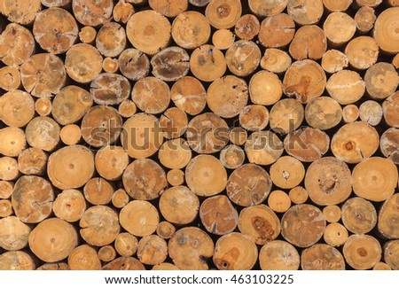 abstract Timber old  wooden wall  background.