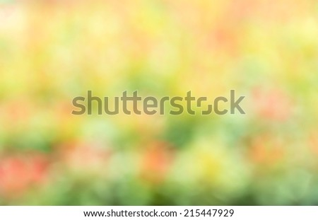 abstract trees nature background - stock photo