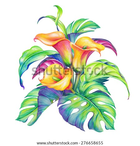 abstract tropical flowers and leaves, jungle foliage, exotic nature, watercolor illustration isolated on white background - stock photo